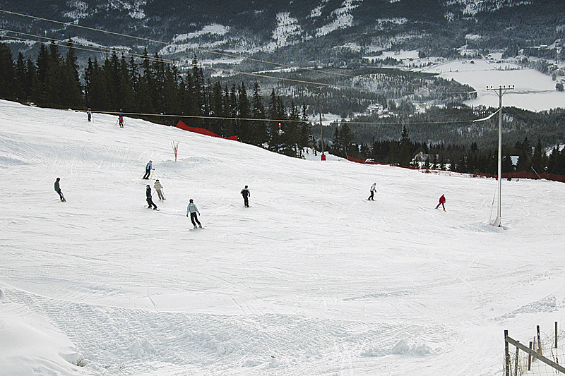 ski.jpg - big
