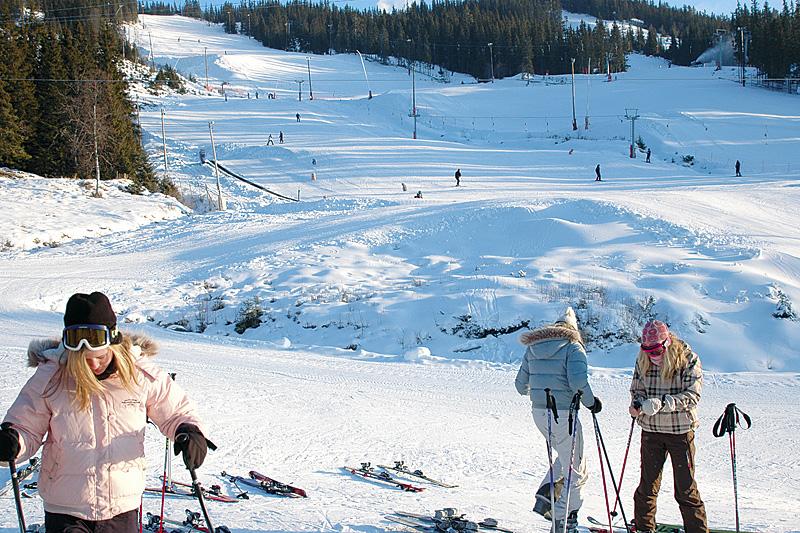 ski_2.jpg - big